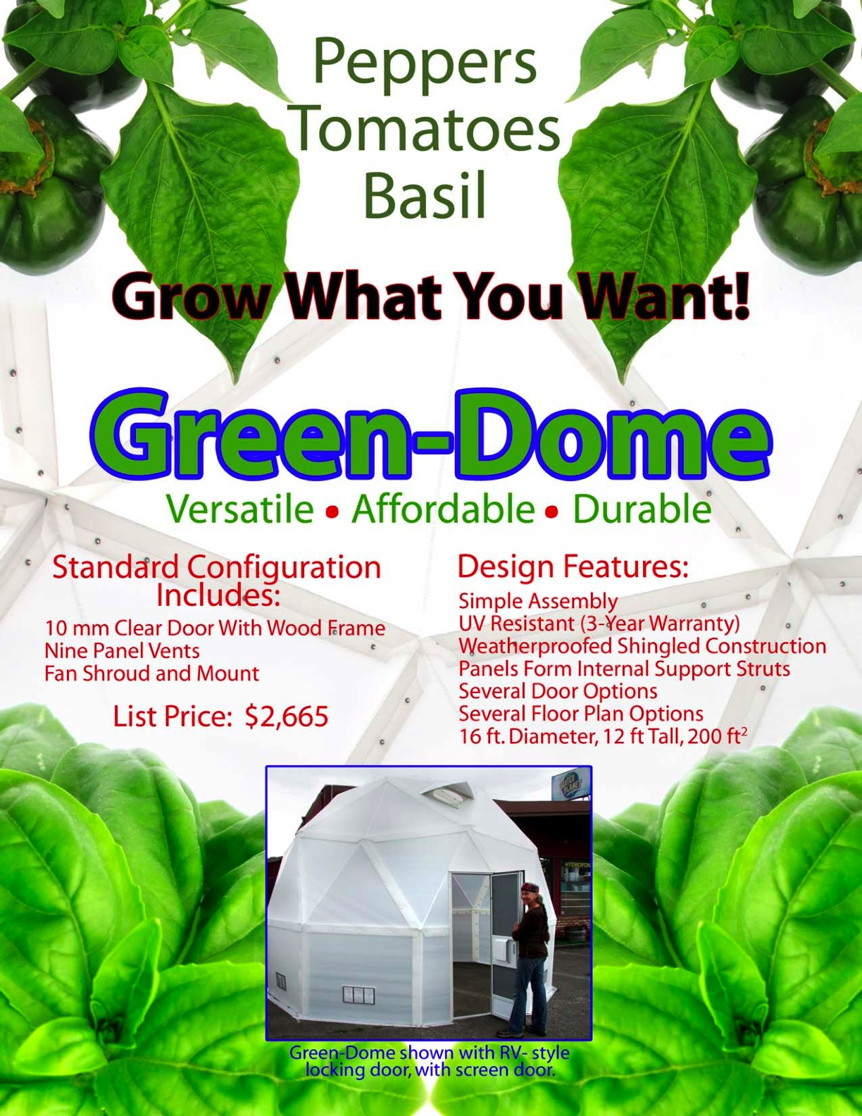 green dome front